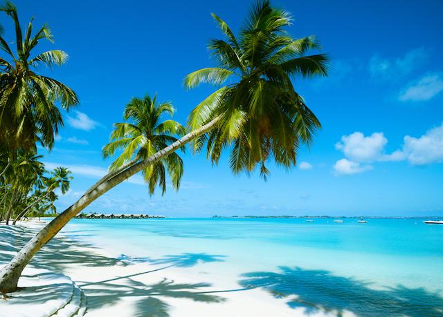 Beautiful Beach Resort